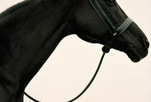 I <3 horses
