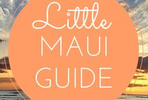 Maui: Guides / Helpful guides to make your Maui vacation a true success.