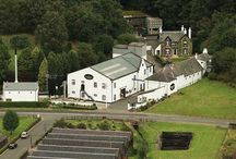 Glengoyne Whisky / Whisky Please sells the finest single malt whiskies online at very low prices.