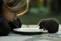 So cute / by Blake Rogers