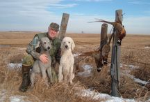 hunting and the outdoors / by Tonya Schutte
