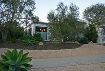 Mid-Century Modern Landscape / Mid-Century Modern Home with California Native Plants