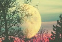 Things to do on a full moon