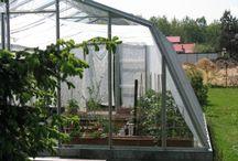 Szklarnia polska, Adela / Proponujemy polskie szklarnie ogrodowe w różnych rozmiarach. Polski produkt to gwarancja dobrej jakości. Prezentujemy szklarnię ADELA
