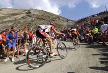 Cycling Bucket list / Climbs, rides, regions to check out  / by Alex Armstrong