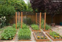 Tuinieren & buiten leven