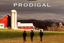 Amish Titles Available From WVDELI / by Marion County Public Library System
