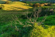 South Coast New South Wales