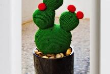 Cactus / by Luziane Brock