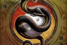 dragon possibility