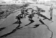 Earthquake Preparedness & Survival