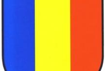 FLAG STICKER BANDERAS