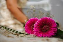 El intrusismo en la fotografía de bodas / Ideas para una boda, el intrusismo en la fotografía de bodas