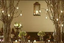 Wedding / by Angela Lobo
