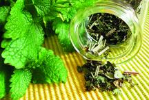 Zdraví a bylinky