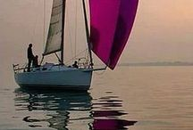 Segling, hav, natur