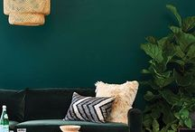 statement wall colour