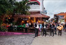 Mi Pueblo / Entre tequilitas, Mariachis y la famosa 5ta Avenida disfruta de las recetas originales de la abuela en el corazón de la Riviera Maya. Mi Pueblo es el lugar perfecto para disfrutar de comida tradicional mexicana.