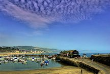 Lyme Regis / All the best things about and around Lyme Regis!