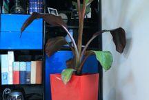 Pot, bac, jardinière / La décoration de votre maison par les plantes : pot, bac jardinière