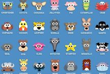 Animals - activities