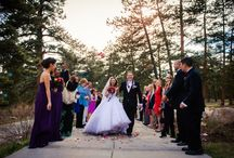 Ceremonial Toss / petal toss, leaf toss, aspen leaf toss, dried lavender toss, bubble send-off