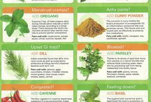 Therapeutic essential oils, herbs, and spices