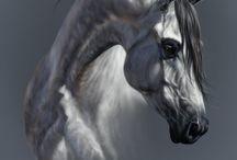 Horses Arts