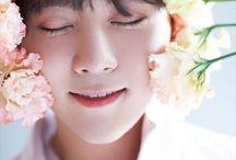 Seventeen - Seungkwan