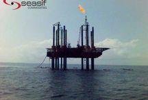 Seasif Holding