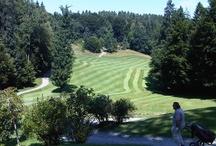 golf / i like golf