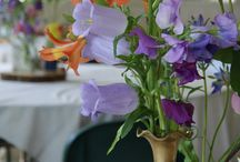 British-grown flowers by Florissimo / I source seasonal blooms from British flower farms and local artisan growers wherever possible. They are perfect for eco-weddings as well as businesses keen to source responsibly. Many flowers are bigger, fresher and better-value when sourced from British growers rather than imported.