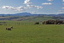 Places to Visit near the Racecourse Inn / Historic and interesting places to visit near The Racecourse Inn at Longford, Tasmania.  www.longfordaccommodation.com.au