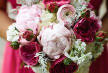 Raspberry & Fuchsia Pink Weddings / by Queenie Lily