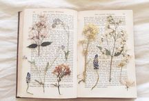 Pressed flowers notebook