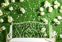 Flower walls / Flower screens