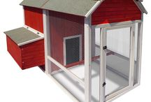 chicken coops / by Stacy Boyle