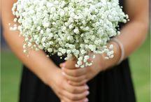 BP / by Jennifer :: Jen Rios Weddings