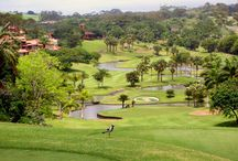 Golfers Paradise / Our collection of golfing down south.