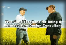 Consulting Tips
