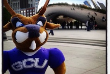 #thundereverywhere / Here at GCU we love our mascot Thunder! Who knew an antelope from Arizona could be such a great traveler? / by Grand Canyon University