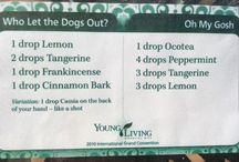 YL Diffuser Recipes