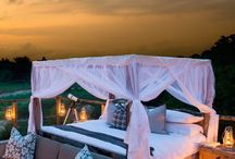 Safari Lodges and Camps in Africa