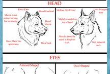 Huskydogs