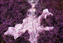 Purple / by Ah Wan Tierney