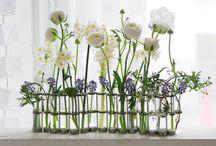 Flowers Fansies / by Fleur Jardin