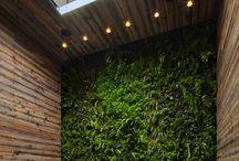 indoor zahrada