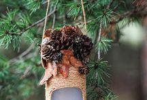 Кормушки птиц