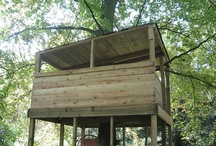 Treehouses/ Playhouses / by Paula Rizzo