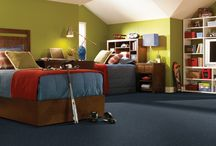 Pop Culture/Showbiz / A textured cut pile carpet and delightful shag with fifteen awe-inspiring color assortments
